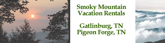 Pigeon Forge By Owner